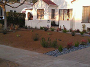 lawn-care-los-angeles